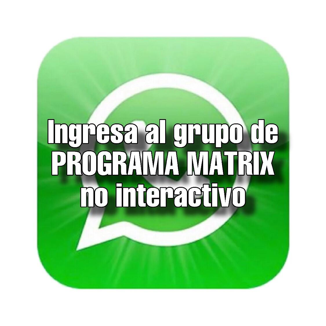 Ingreso al grupo de PROGRAMA MATRIX no interactivo